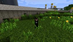 QuestCraft: Ainitnoc Edition v2 Minecraft Texture Pack