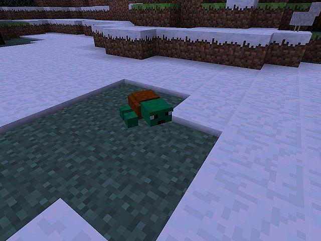 Crazy Turtle Mod