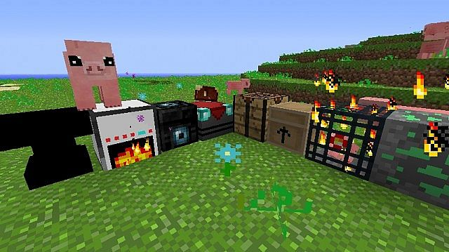 the blocks and an adorable pig.