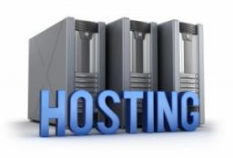 Cheap Server Hosting 1 Server Left ! Minecraft Blog