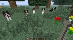 Random mobs [Dogs and Cats] Minecraft Texture Pack