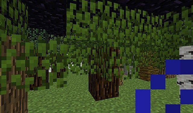 Deep Woods Biome