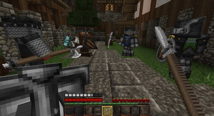 Fighting in first person using the iron spear and iron shield