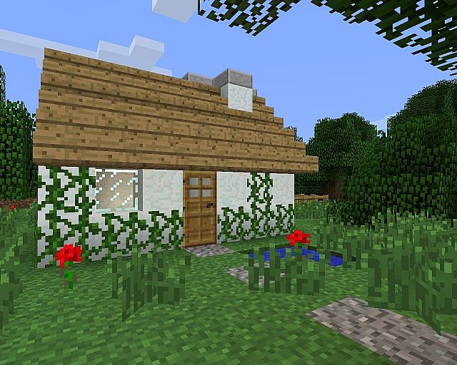 Small House Minecraft Project