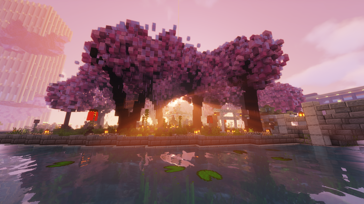 Cherry Blossoms in Spawn Central Park