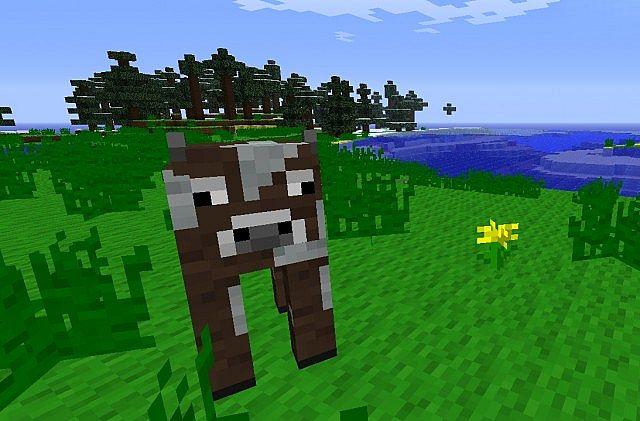 New Tall Grass Texture!