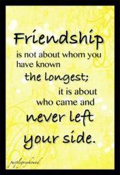 Friendship, a MineCraft blog Minecraft Blog