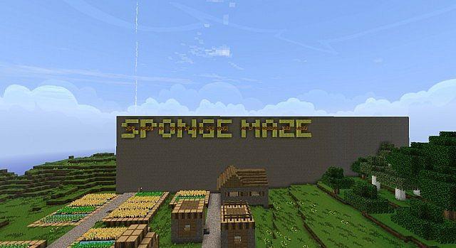 Sponge Maze