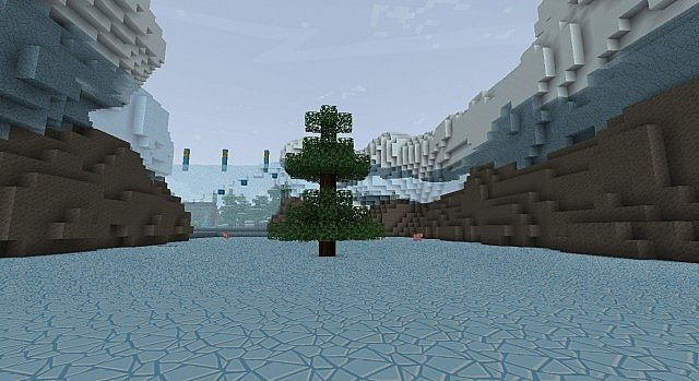 Tree in middle of glacier
