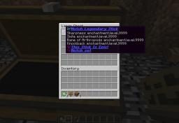 Custom Items! Minecraft Project