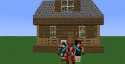 Playing with an Animator! Minecraft Blog Post