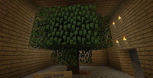 Tree Room