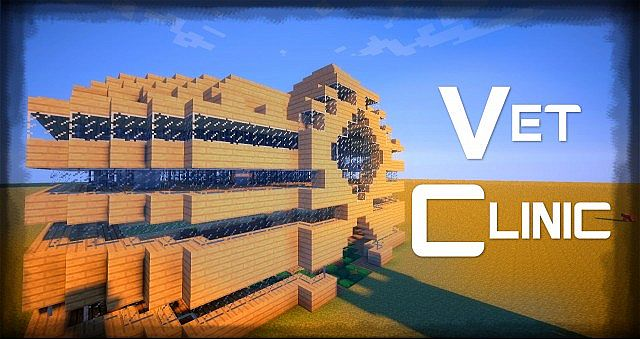 Vet Clinic Minecraft Project