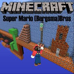 Super Mario (Bergsma)Bros Minecraft V8 Minecraft