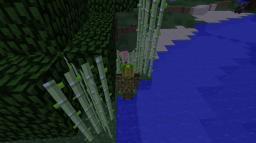 Stealth Minecraft Blog Post
