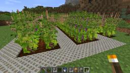 [1.5.2] BetterWorld Plants & Food, add a lot new, incl. Wine, Beer & Coffeemachine Minecraft