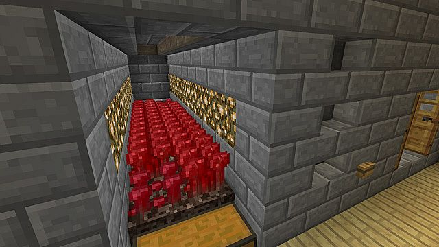Here is my Nether Wart farm