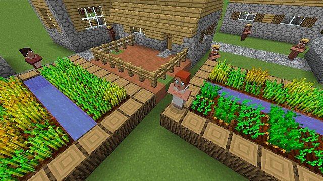 A NPC Village.