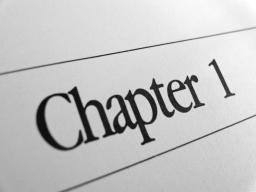 Chapter 1 Minecraft Blog Post