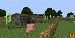 Pig Pen Minecraft Map & Project