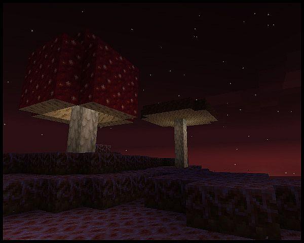 Shroomland