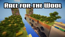 New Race for the Wool Map Minecraft Project