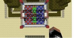 Minecraft Boxing! (Original) Minecraft