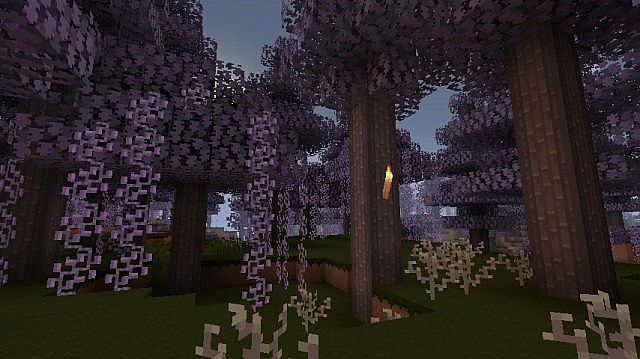 Biomes o Plenty Support!