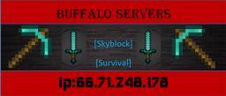 Buffalo Servers Minecraft Server
