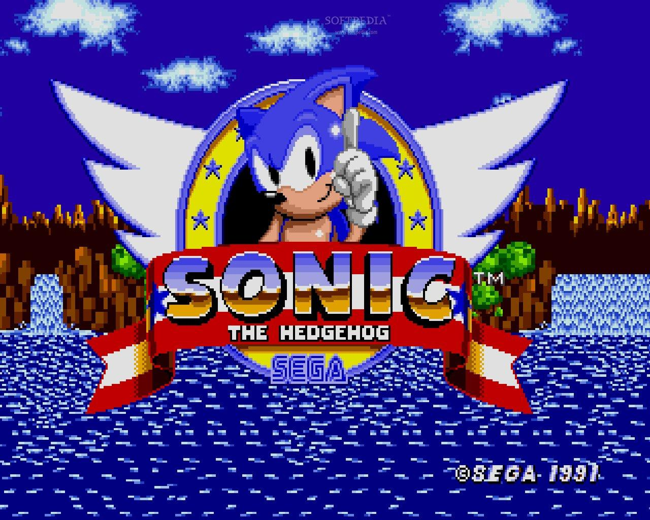 Sonic the hedgehog Minecraft Project
