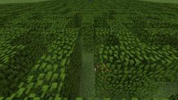 The Maze Adventure Map Minecraft