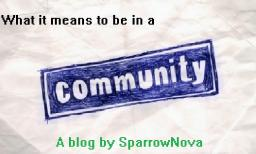 What it Means to be in a Community Minecraft Blog