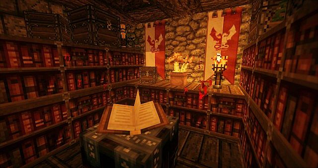 Small library in the basement