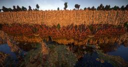 Brinkmoor Minecraft Map & Project