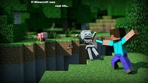 Survival Mc Minecraft Server
