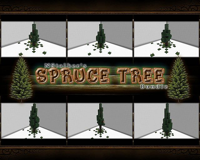 Spruce Tree [Schematic Bundle] - 6 Designs / Different Sizes ... on tree cable, tree diagram, tree cell, tree visualization, tree switch, tree guide, tree maintenance, tree photograph, tree tutorial, tree anatomy, tree graph, tree wire, tree project, tree blueprint, tree display, tree roots silhouette, tree box, tree 3d, tree trench, tree chart,