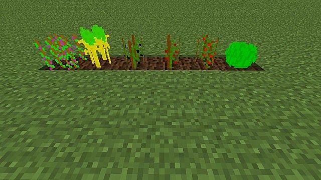 Crops in MoarFood