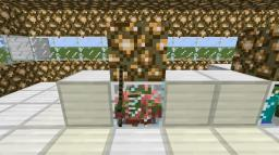 Cool Lab Minecraft Project
