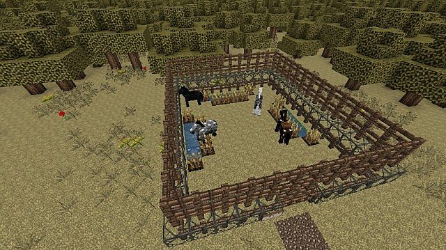 Summer Stables