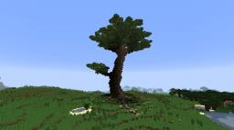 Spawn Tree Minecraft Map & Project