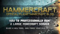 How to professionally run a large Minecraft server