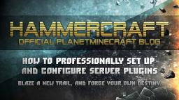 How to professionally set up and configure server plugins