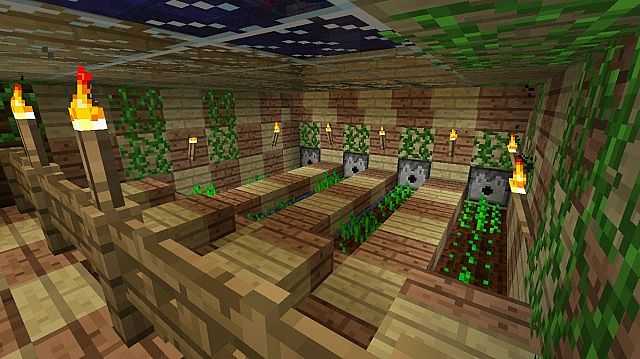 The new wheat farm!