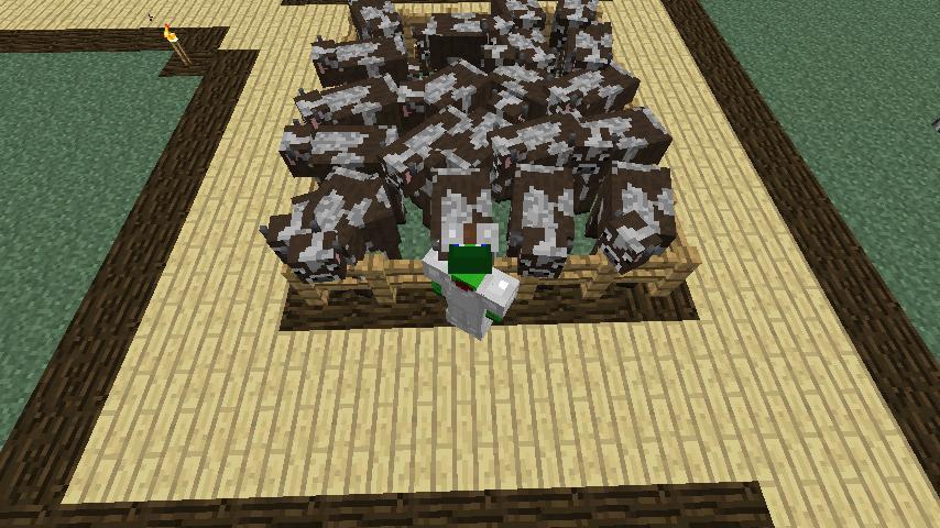 Minecraft no health regeneration