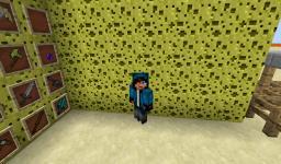 Imaxelius craft Minecraft Texture Pack