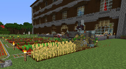 How to capture Illagers and use them in farms Minecraft Blog