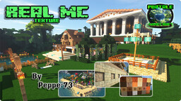 Real-MC Texture Pack for 1.13 - 1.16.5 Minecraft Texture Pack