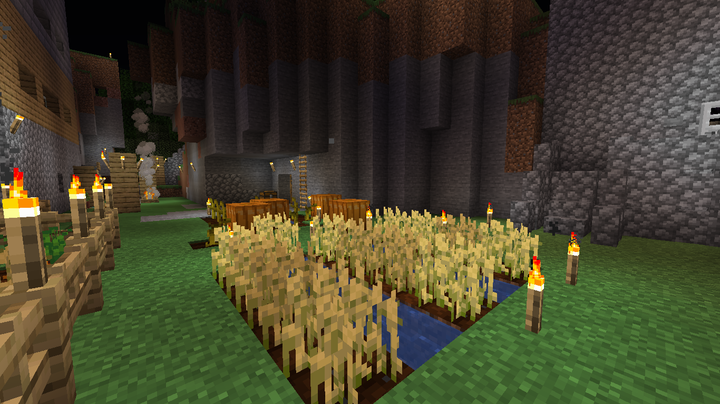 Here was the first edition of my garden! Yes, I like to keep history!