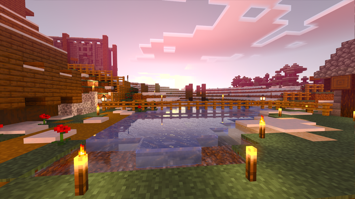 Sunset in survival
