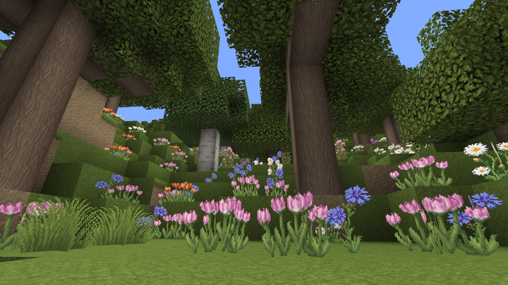 a Flower Forest